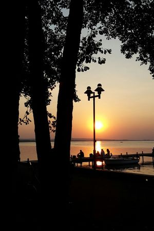Tree Silhouette Street Light Silhouettes Sunset Sun Water Tranquil Scene Tranquility Idyllic Scenics Nature Nature On Your Doorsteep Branch Lake Lake View Landscape Calm Jetty Jetty View Boat People Silhouettes People Sitting With Other People Niedersachsen Steinhuder Meer