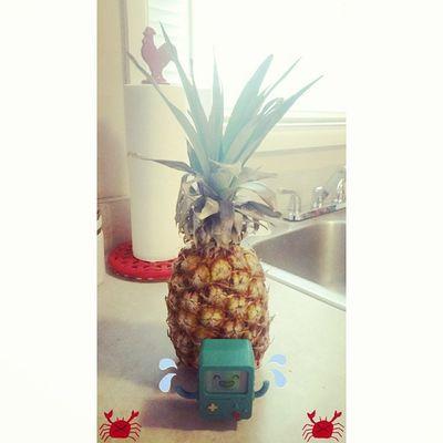 """Who lives in a pineapple under the sea!?"" Adventuretime Finnthehuman Jakethedog Finn jake colorful marceline princessbubblegum lumpyspaceprincess SquidwardTentacles peppermintbutler bmotheadventurer love flameprincess PatrickStar BMO thelich Nickelodeon ladyrainicorn SpongeBobSquarePants iceking gunter SpongeBob penguins whattimeisit pineapple"