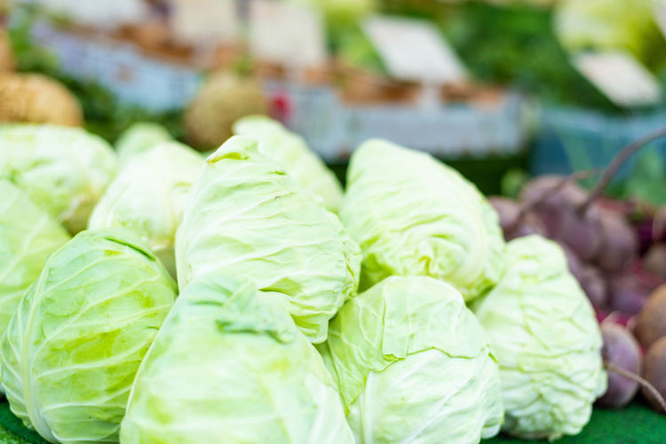 Cabbage Close-up Day Focus On Foreground Food Food And Drink For Sale Freshness Green Color Healthy Eating Large Group Of Objects Lettuce Market Market Stall No People Raw Food Retail  Still Life Vegetable Vegetarian Food Wellbeing