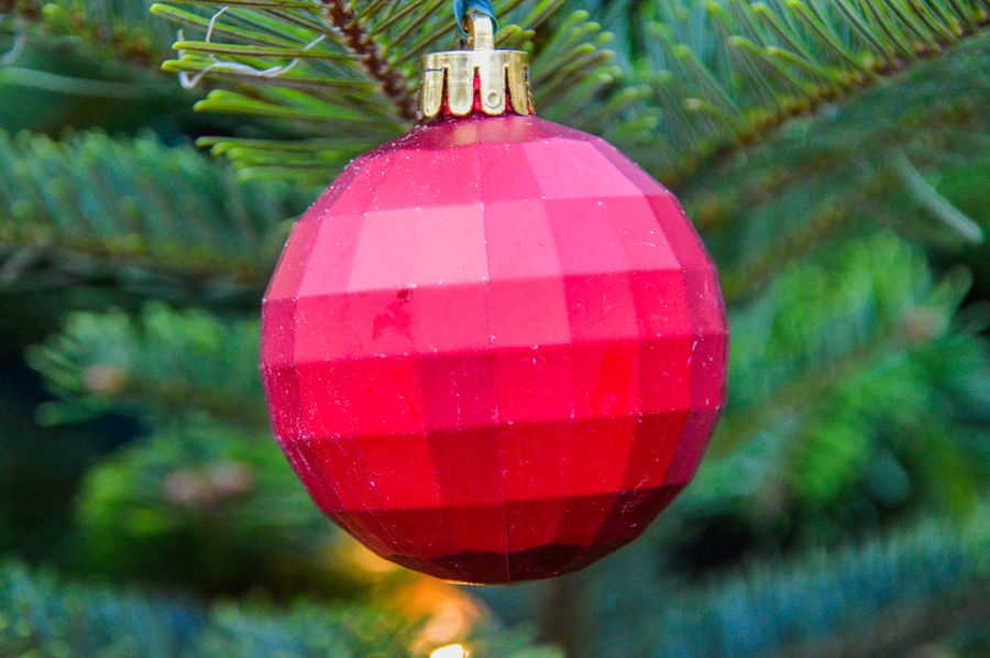 One Red Christmas Ball Christmas Holidays Netherlands Red Tree Christmas Ball One Item Red Color