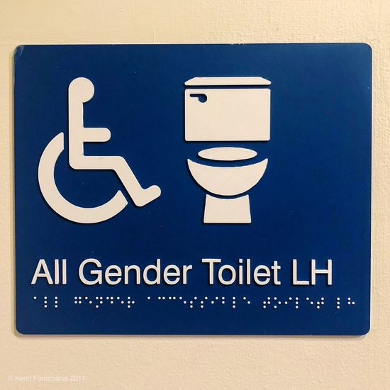Gender neutral and disabled toilet sign Bathroom Disabled Bathroom Gender Neutral Toilet Communication Disabled Access Disabled Sign Differing Abilities Text Sign No People Information Human Representation Wheelchair Information Sign Representation Western Script Close-up Blue High Angle View