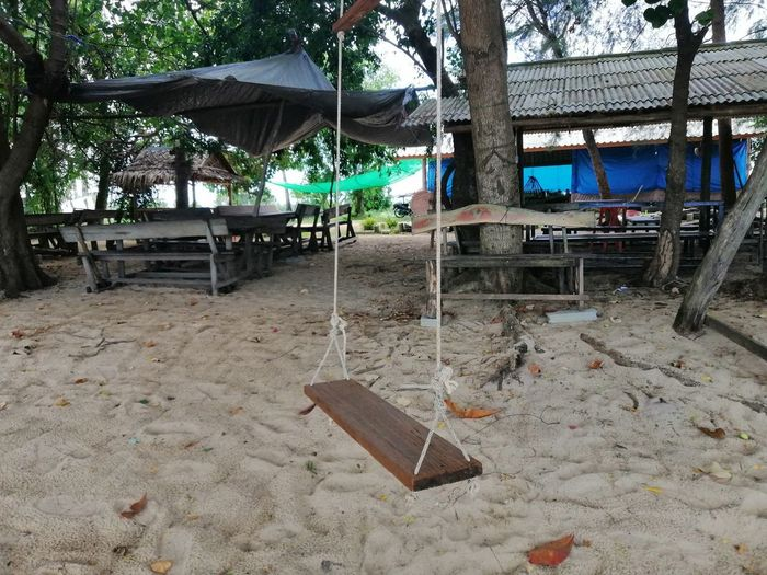 Deck chairs on beach against trees on field