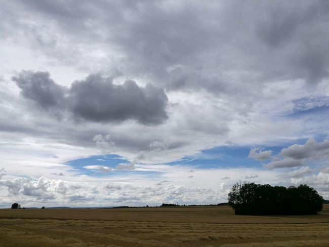 Cloud - Sky Dramatic Sky Cloudscape Landscape Field Storm No People Day Scenics Nature Agriculture Sky Beauty In Nature Outdoors Rural Scene Storm Cloud Tree