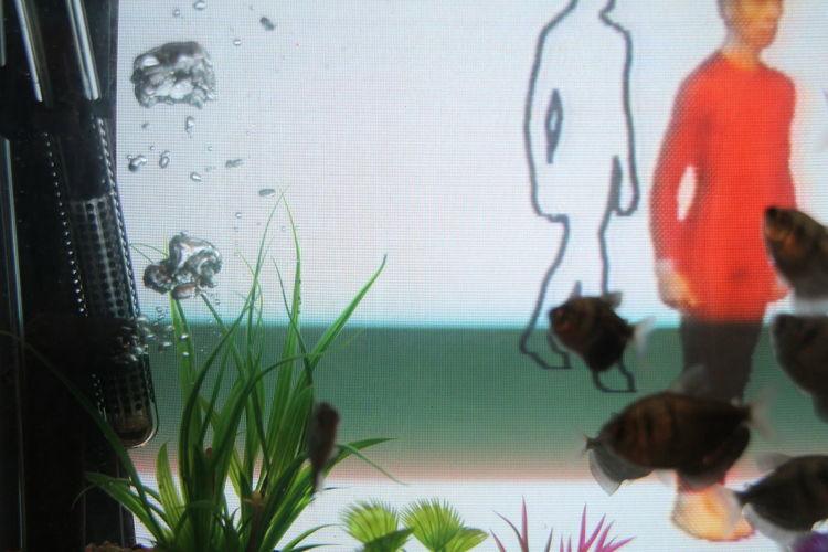 Art Art Center ArtWork Bubble Close-up Fish Fish Bowl Green Color Modern Art PaikNamJun Television Tv Internet Addiction EyeEm Ready