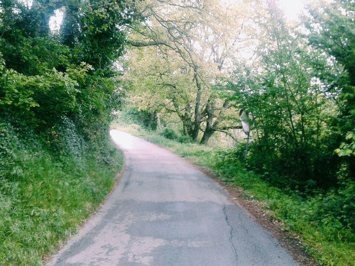 Vscocam Streetphotography Nature Landscape