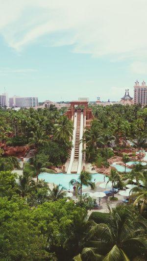 Atlantis Waterpark Paradise Island Nassau, Bahamas Water Slides