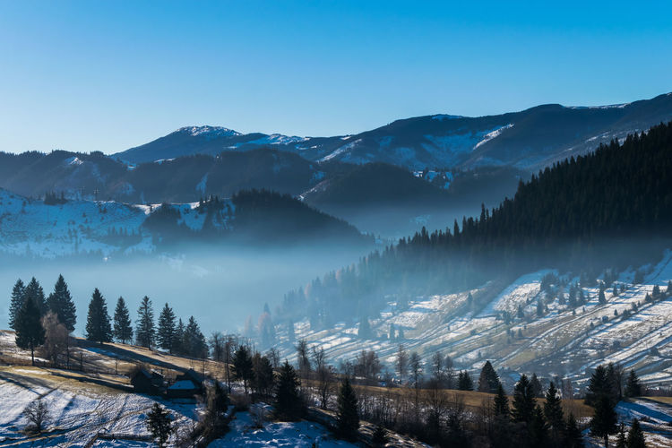 Scenic winter in northern Romania Beauty In Nature Blue Clear Sky Cold Temperature Forest Landscape Mountain Mountain Range Nature No People Outdoors Pine Tree Pine Woodland Scenics Sky Snow Tree Winter