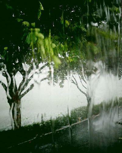 บางทีฝนก็คงเป็นข้าราชการเหมือนเราๆ ตกได้เวลาตลอด 😩😩😩 Rain Salaryman Cominghome