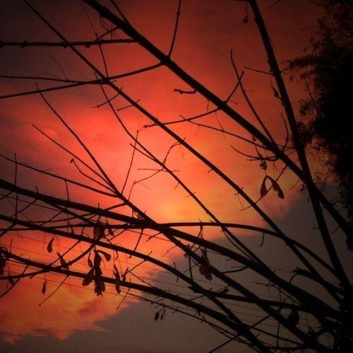 No conozco un valor mayor que el necesario para mirar dentro de uno mismo. Clouds And Sky #sunset #sun #clouds #skylovers #sky #nature #beautifulinnature #naturalbeauty #photography #landscape Amaneciendo... Sin Filtros