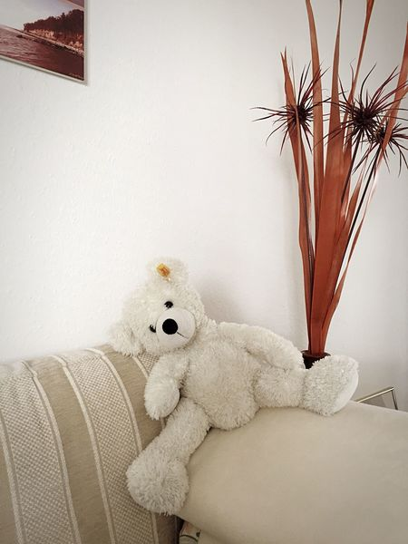 Relax ! Hanging Out Relaxing Enjoying Life Holiday Teddybear Teddy Sweet Children Keep Calm Chilling Kuscheltier