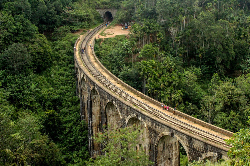 High angle view of railway bridge in forest