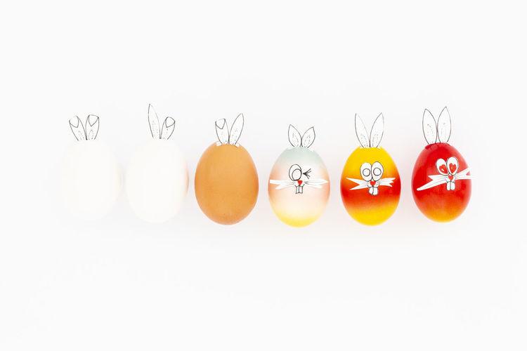 Various eggs against white background