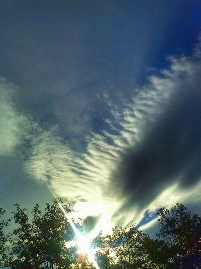 Mirando Al Cielo Clouds And Sky Sky CollectionTaking Photos