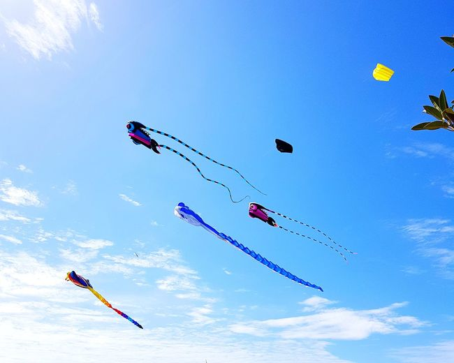Flying Mid-air Airshow Sky Day Arts Culture And Entertainment Air Vehicle Fun Motion Outdoors People Stunt Large Group Of People Nature Aerobatics Vapor Trail Kitesurfing Kite Festival Kites
