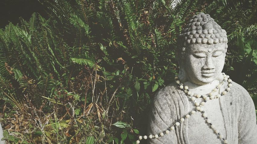 Staue  Art Beautiful Hello World Photography Namaste ❤ Buddha Cool Peace Summer ☀