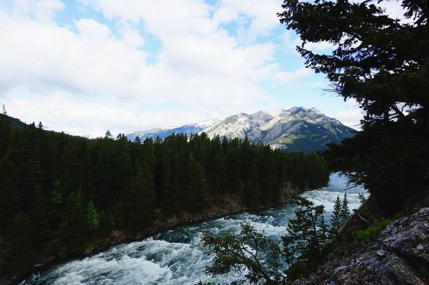 Banff  Alberta Canada Road Tripping Abventure Exploring Travel Wild River Mountains Sky Forest Nature