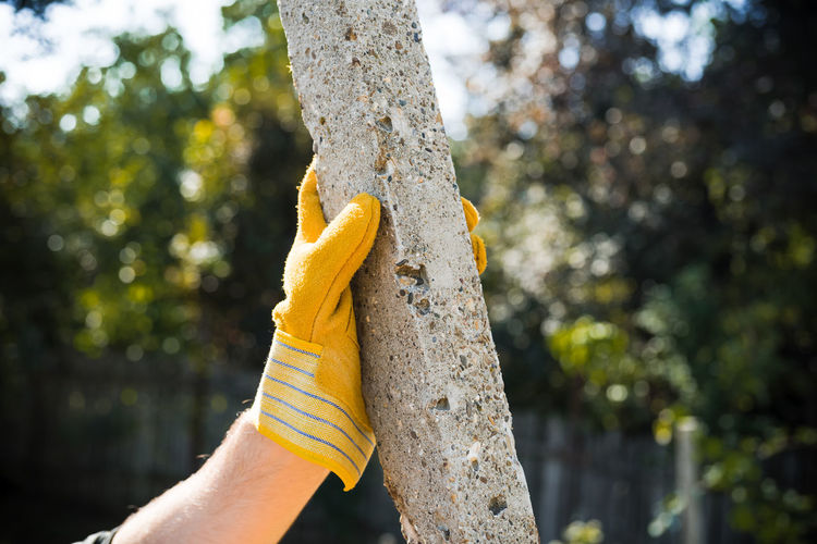 Yellow Glove on Pole Human Body Part Human Hand Hand Focus On Foreground Plant Trunk Tree Trunk Tree Day One Person Holding Nature Real People Body Part Outdoors Unrecognizable Person Yellow Personal Perspective Finger Human Limb Glove Pole Concrete Cement Gloves