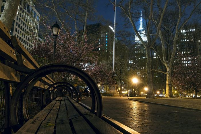 Madison Square Park  Manhattan New York City Park New York Urban NYC Traveling Wanderlust Bench Park Bench Canon NYC Parks I Love New York City Life City Empire State Building Architecture Urbanphotography City View