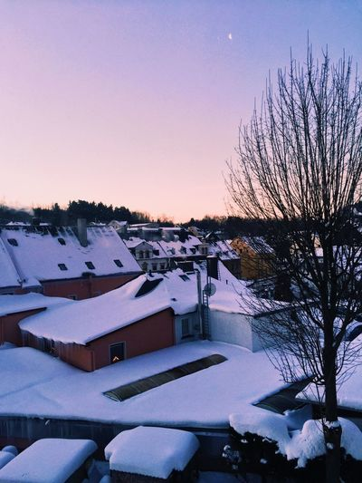 Snow covered houses and trees against sky during sunset