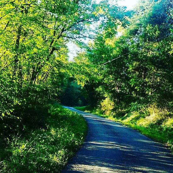 Old back road in Cannon County. Relaxing Enjoying Life Home Sweet Home ♥