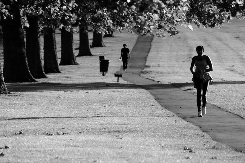 Plant Full Length Rear View Walking Tree Real People Day Nature Lifestyles People Motion Running Sunlight Group Of People Leisure Activity Outdoors Footpath on the move Blackandwhite Run Running Sashalmi Black & White Park Black And White