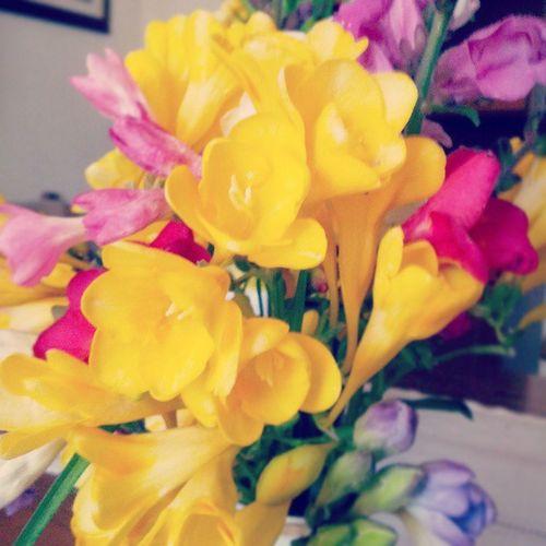 Colori di Primavera Sundaymoring