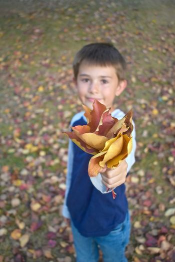 Beautiful leaves for you Autumn Collection Children Autumn Autumn Colours Beautiful Autumn Leaves Fallen To Ground Young Boy Handing Them To You Boquet Boy Collecting Leaves In Autumn Holding Leaves Boys Casual Clothing Child Handing You A Handful Of Leaves Childhood Elementary Age Handing You A Boquet Happiness Holding Leaves Kids Outside Leaves Changing Colors Looking At Leaves Outdoors People Playing In Leaves Popular Photos Seasonal Concepts Images Photos Seasons Smiling Welcoming Autumn