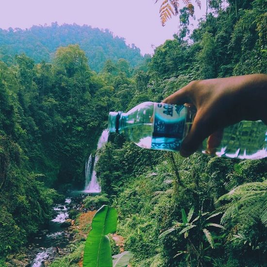 Beautyfall curug gomblang baturaden Growth Person Horizontal Adult Agriculture One Person Tree Outdoors Nature Water Human Body Part People Day Close-up Scientist SAVEINDONESIA