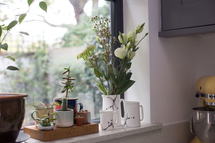 Flowers by window at home