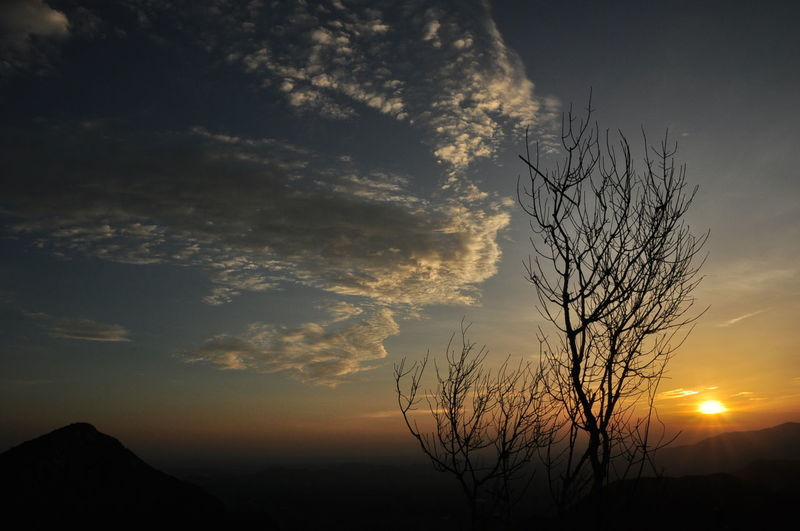 Beauty In Nature Cloud - Sky Day Low Angle View Nature No People Outdoors Scenics Silhouette Sky Sunset Tranquil Scene Tranquility Tree