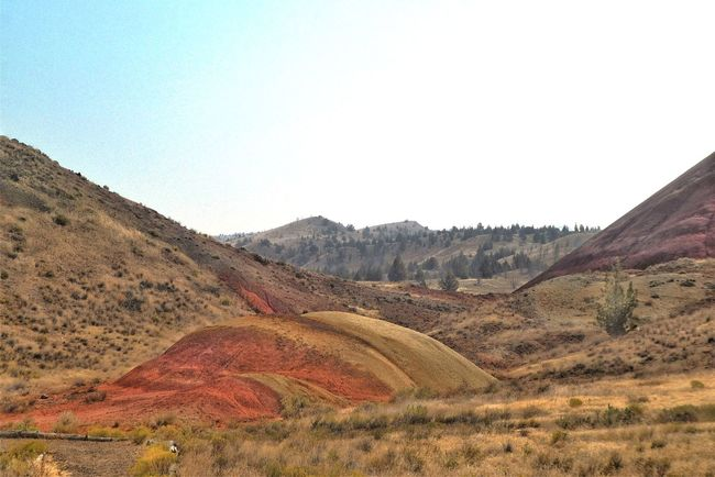 The Painted Hills The Painted Hills Hills And Valleys Sparse Vegetation Oregon Multi Colored Environment Landscape Sky Scenics - Nature Tranquil Scene Tranquility Land Nature Mountain Clear Sky No People Mountain Range Non-urban Scene Beauty In Nature