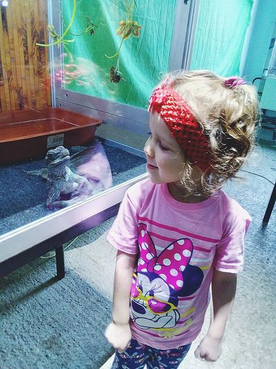 Eyes To Eyes Gambling My Little Princess Zoo New Friends Lizard Terrarium