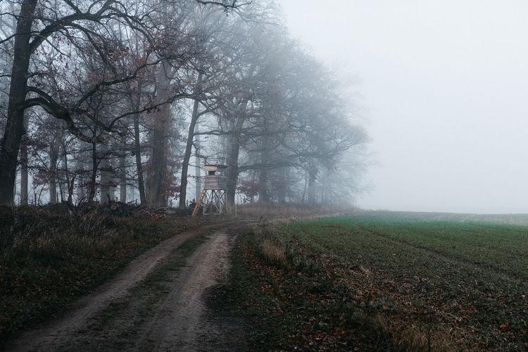 Brandenburg im