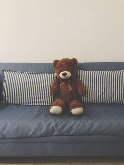 Teddy bear on sofa at home