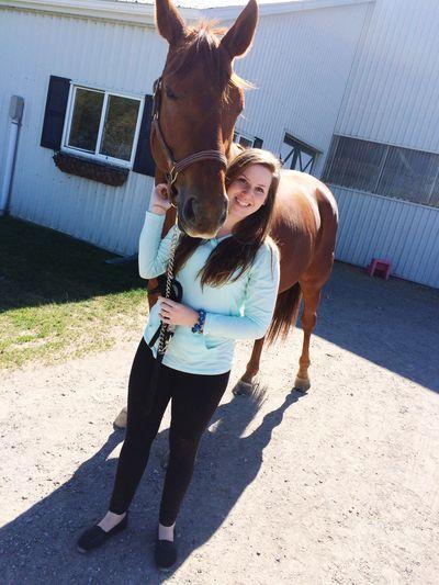 My favorite boy 😍❤️🐴 Horse Oldenburg Equestrian Horseback Riding Chestnut Lovehim Donner Teen Girl Summer