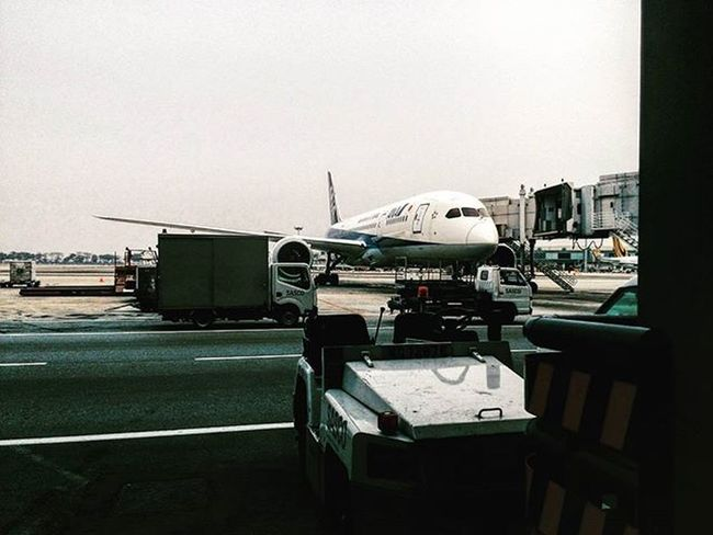 Line Maintenance but not tech or lae ... sien Aircraft Ana Linemaintenance FirstJob Sien