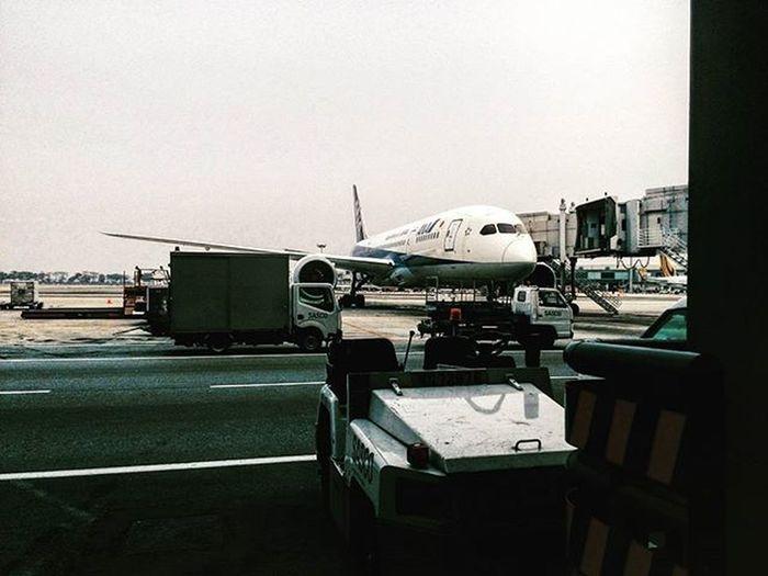 Line Maintenance but not tech or lae ... sien Aircraft Ana Linemaintenance FirstJob Sien