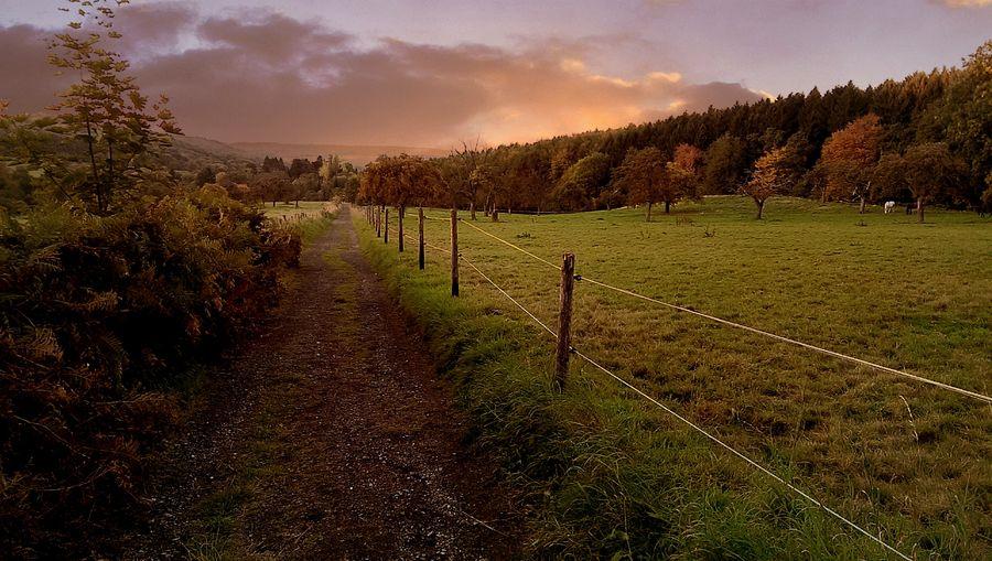 Sunset Siebengebirge Germany Enjoying Life Autumn Colors