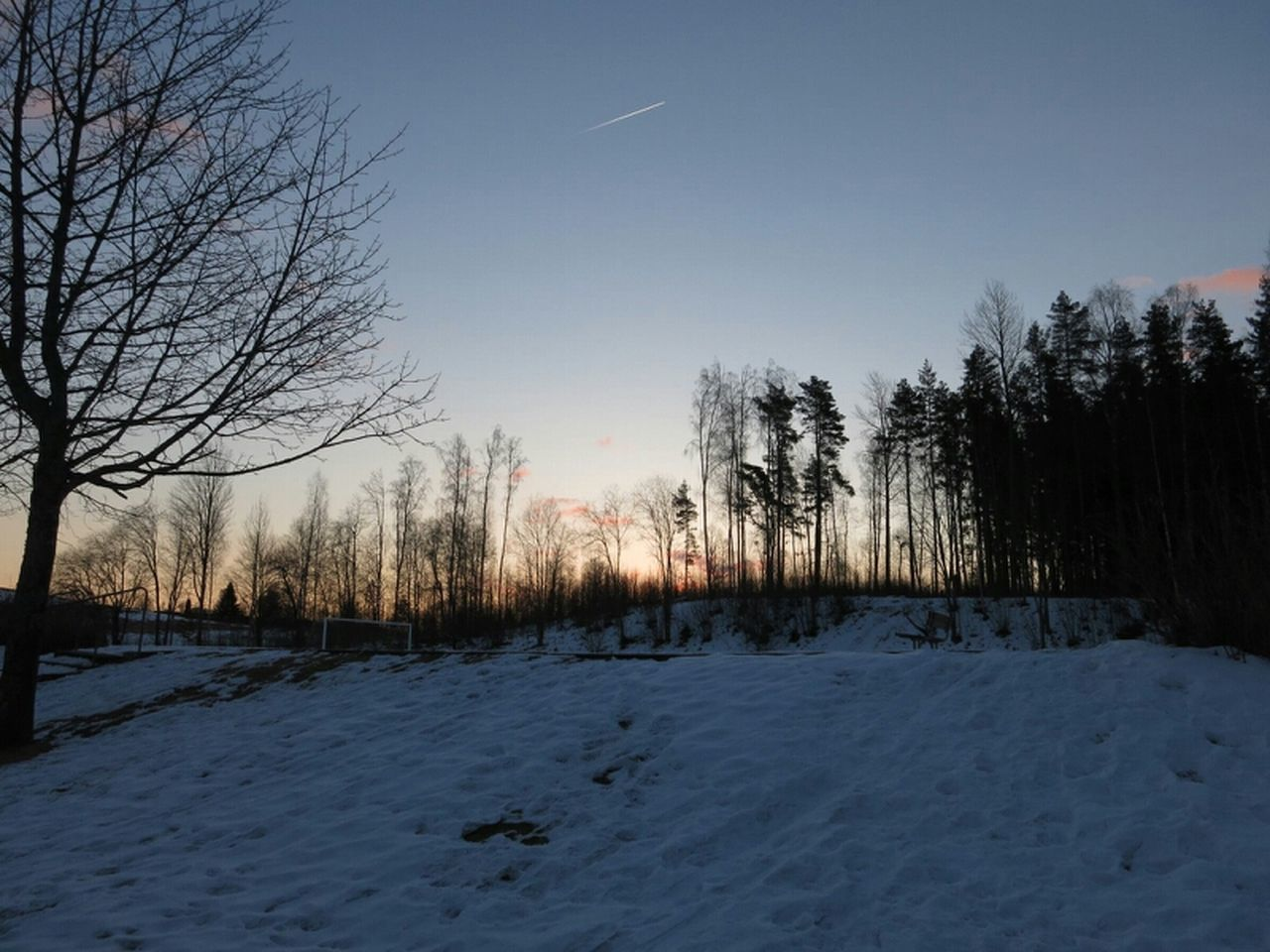 snow, winter, cold temperature, nature, weather, tree, tranquility, bare tree, beauty in nature, cold, scenics, no people, tranquil scene, outdoors, landscape, frozen, sky, day, sunset