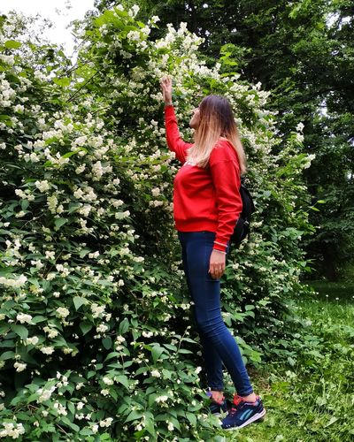 Tree Young Women Wireless Technology Standing Red Full Length Women Happiness Mobile Phone Casual Clothing Self Portrait Photography Photo Messaging Footwear Peace Sign - Gesture Smart Phone Digital Camera Photography Themes Portable Information Device Cellphone Photographing Digital Native Self Portrait Selfie Monopod Taking  Hot Pants Lush - Description