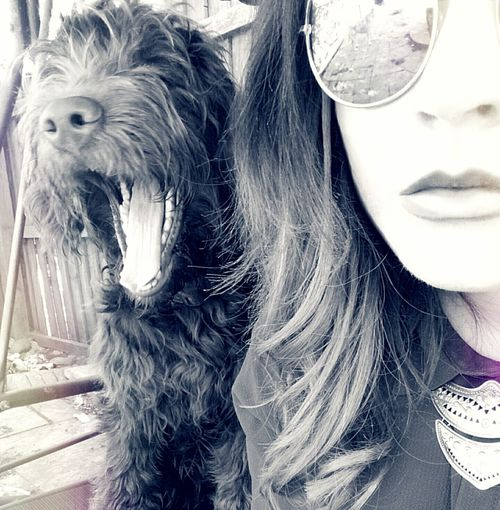 Love this guy Hey  Selfie Love Cute Blackandwhite Girl Cool Chillin Puppy Newfydoodle