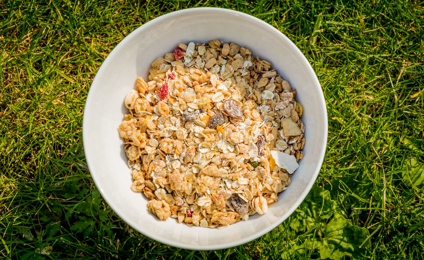 Directly Above Shot Of Breakfast Cereals In Bowl On Grassy Field