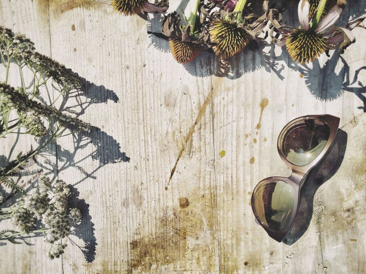 Wood Pattern Wood Texture Old Wood Close-up Retro Flat Lay Bouquet Of Flowers Coneflowers Fading Flowers Dry Flowers Wood - Material Sunglasses