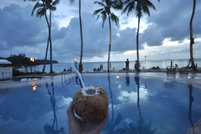Vacation Blue Palau Beach Summer Drink Vacation Tree Water Reflection Cloud - Sky Plant Nature Sky Palm Tree Real People Tropical Climate Lifestyles Unrecognizable Person Beauty In Nature Tranquility Outdoors Leisure Activity One Person Swimming Pool Pool Coconut Palm Tree