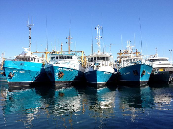 Boats in the harbour Freemantle Perth Australia Fishing Fisher Boats Ocean Nautical Vessel Transportation Mode Of Transport Moored Blue Reflection No People Outdoors Harbor Water Day Clear Sky Sea Nature Sky