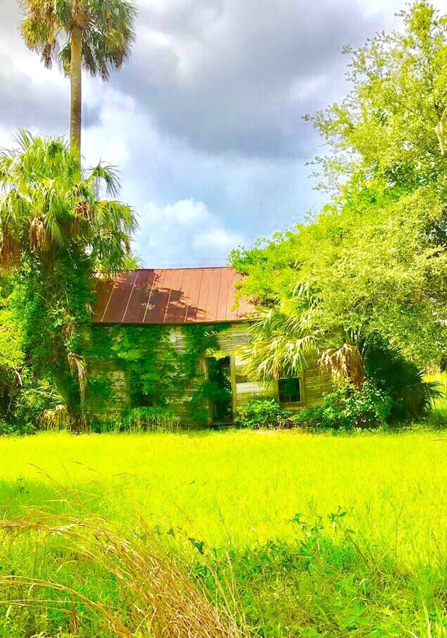 architecture, built structure, building exterior, house, grass, tree, no people, field, day, outdoors, country house, green color, growth, sky, plant, tranquility, nature, landscape, beauty in nature