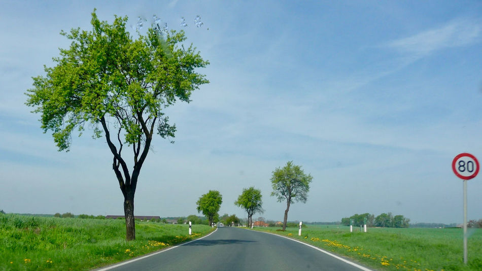 Beauty In Nature Car Day Grass Green Color Growth Land Vehicle Landscape Landstrasse Nature No People Outdoors Road Road Sign Scenics Sky Sommer Speed Limit Sign The Way Forward Transportation Tree