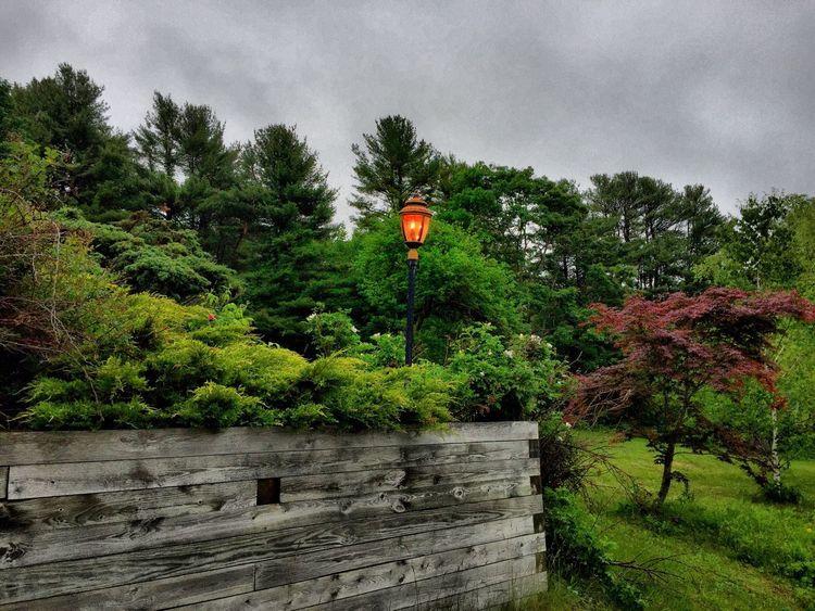 Taking Photos Wall Outdoor Light Rainy Days Maine