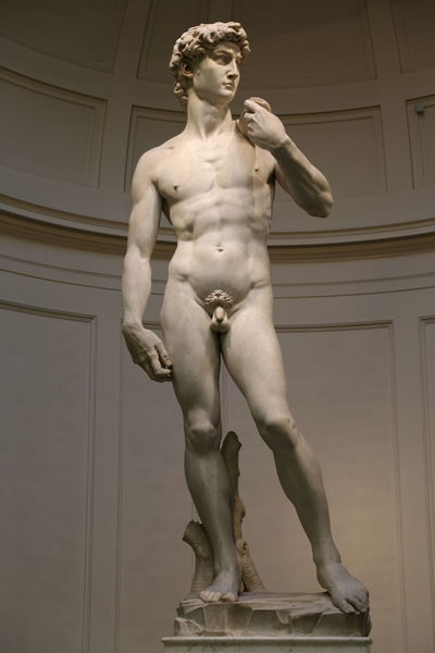 David Florence Italy Accademia Art And Craft Day Front View Full Length Human Representation Indoors  Low Angle View Male Likeness Michelangelo's David Museum One Person Sculpture Standing Statue