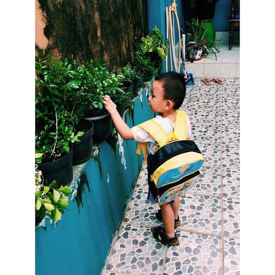 Marvel want to go to school. Kid School Learn Kindergarten cute child family iphone